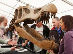 Pluscrates helps 200 million year-old customer visit the seaside